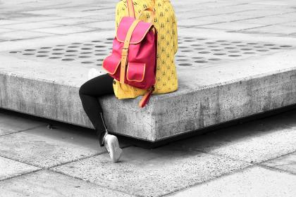 handbag2.jpg